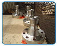 Weldo / Nipo Flanges